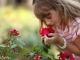 ורד דנטס צלמת – מצגת ייחודית לבת המצווה
