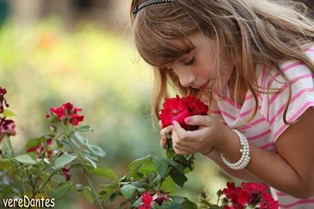 ורד דנטס – צלמת – חוויה ייחודית לבת המצווה