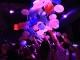 מועדון ריו קלאב  – ראשון לציון