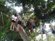 חגיגה על חבלים – יער דן (במסוך למודיעין)