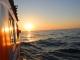 זאב הים השכרת יאכטות לאירועים – הרצליה
