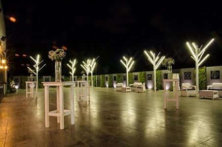 גלריה 279 – חיפה